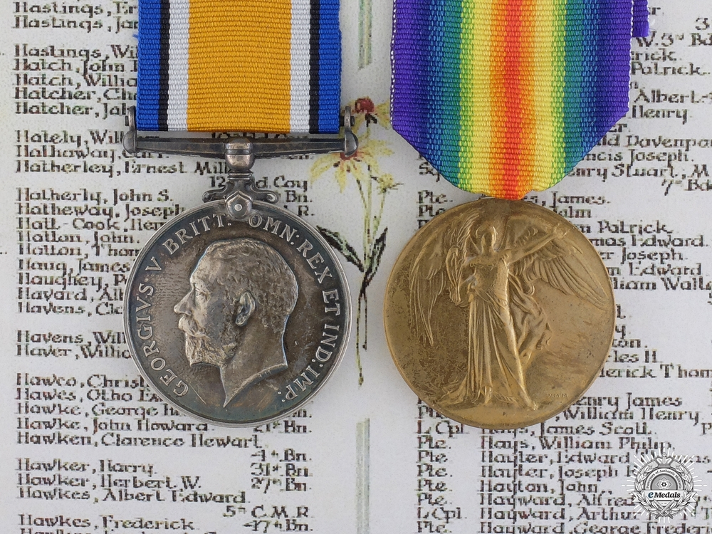 eMedals-A Medal Pair to the PPCLI who was Killed at  Sanctuary Wood