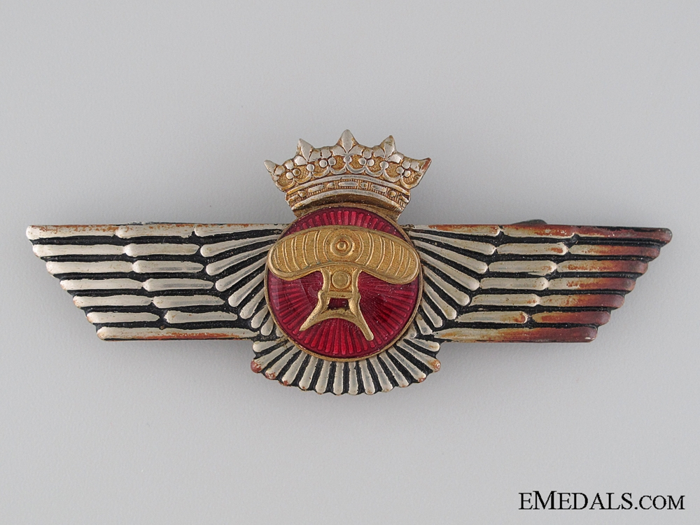 eMedals-A Spanish Air-Detection Wing