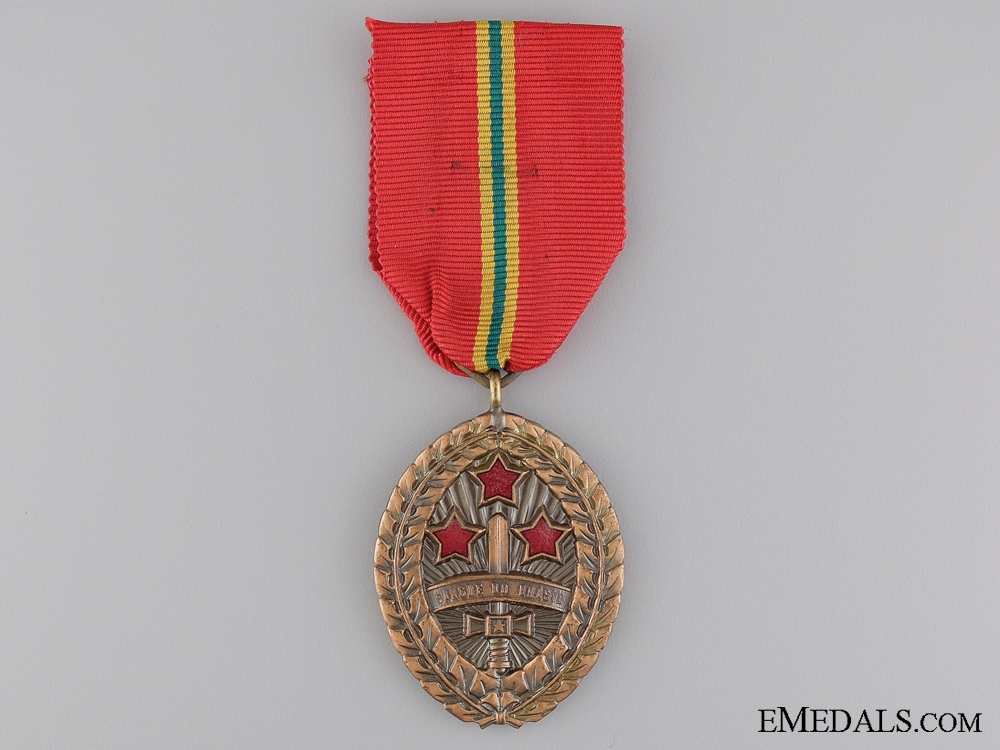 """eMedals-An Army """"Blood of Brazil"""" Medal"""