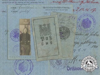 A 1917 German Administration for the Lithuanian Council Area Pass