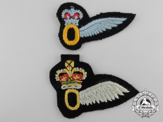 Two Army Air Corps Observer Wings