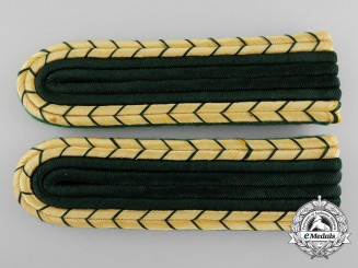 A Set of Mint German Forestry Shoulder Boards