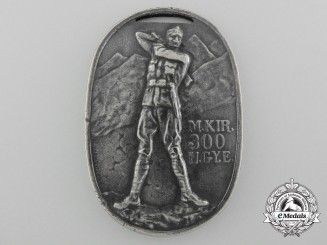 A First War Hungarian Bravery Award for 300th Infantry Regiment