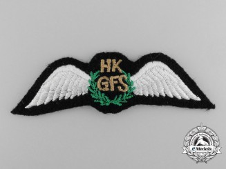 A Hong Kong Government Flying Service Pilot Wing