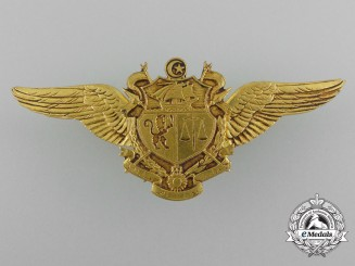 A French-Made Tunisian Air Force Pilot Wing
