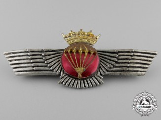 A Spanish Franco Period Paratrooper's Wing