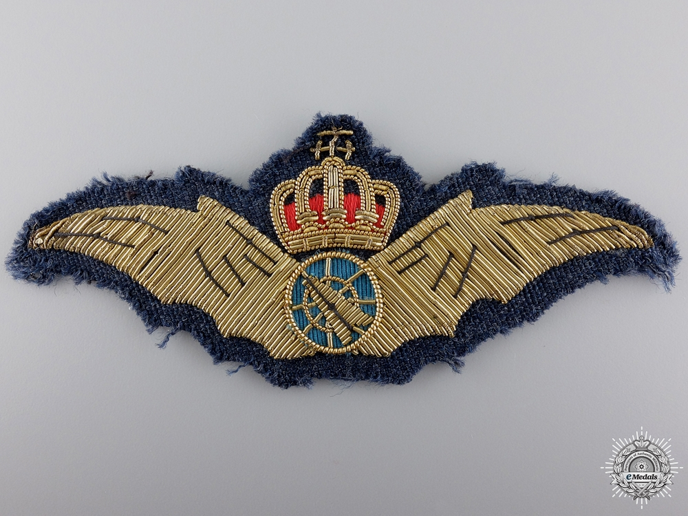 A Danish Air Force System Operator's Wing