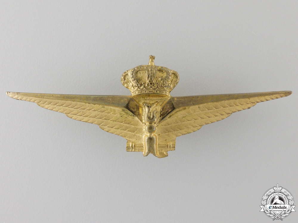 An Italian Air Force Observer's Wing