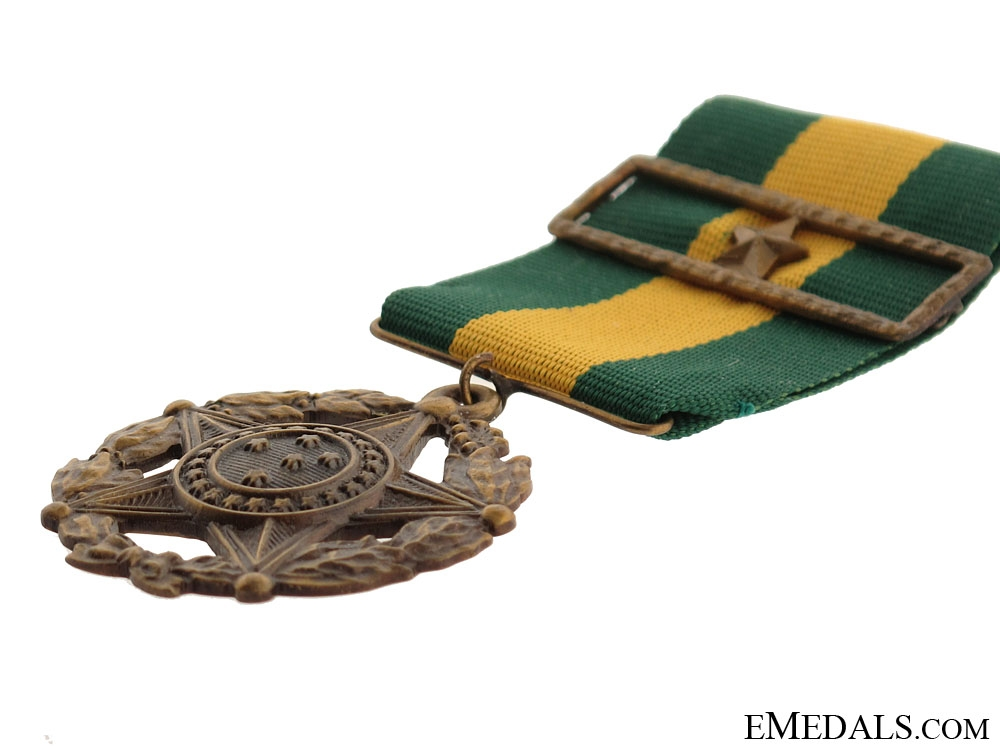 Army Long Service Medal 10 Years