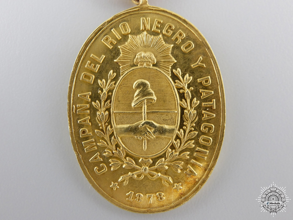 A Gold Rio Negro and Patagonia Campaign Medal
