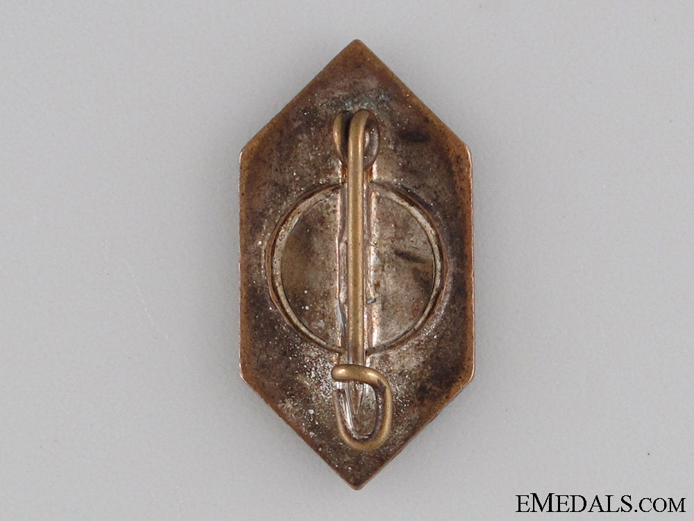 Germanic Peoples in Foreign Countries Badge