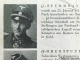 A Oak Leaves Nomination for SS Panzer Commander at Kursk