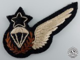 A Ghana Army Parachute Jump Instructor Wing