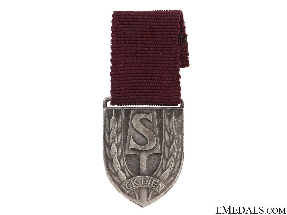 eMedals-A Dutch Nazi RAD Medal