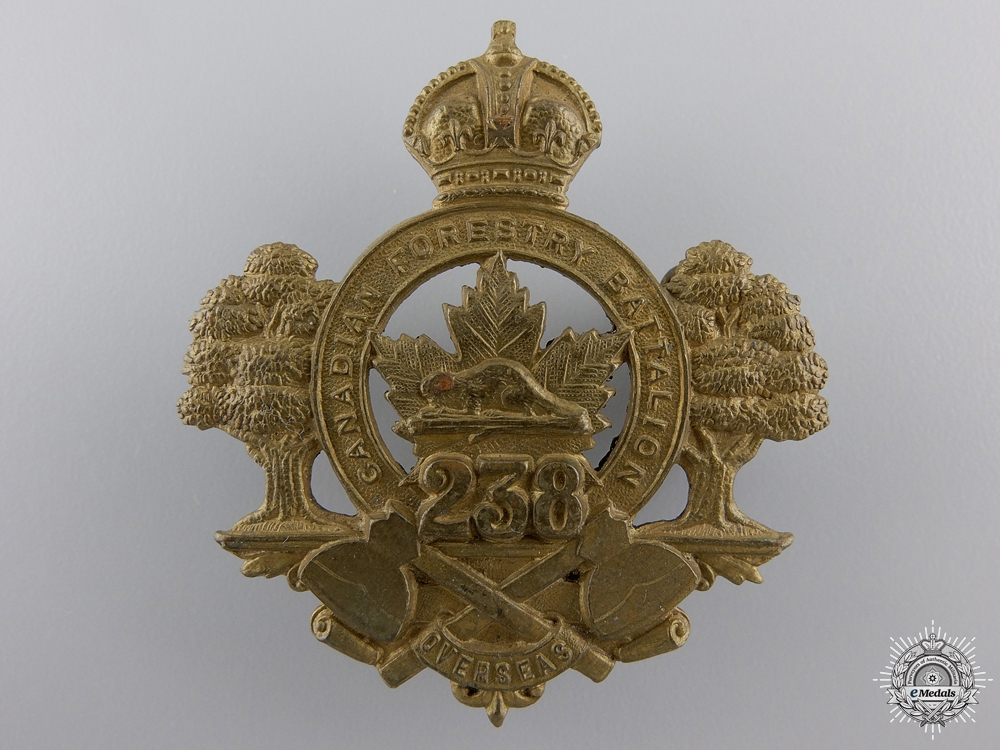 eMedals-A 238th Forestry Battalion Cap Badge