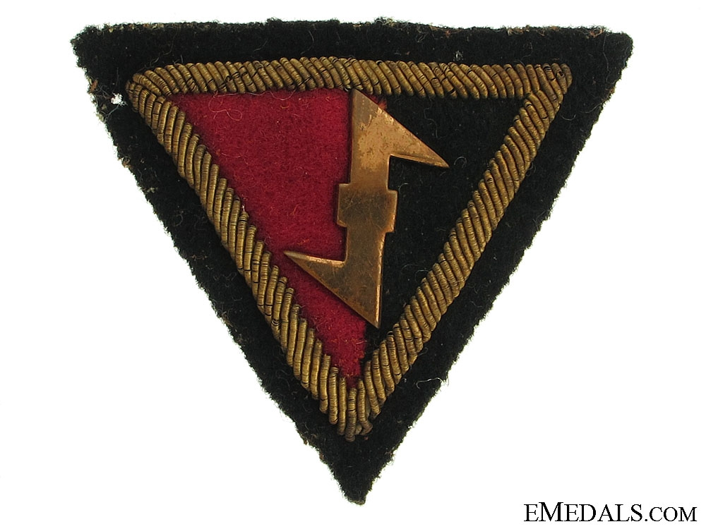 eMedals-A Dutch SS Cloth and Bullion Badge