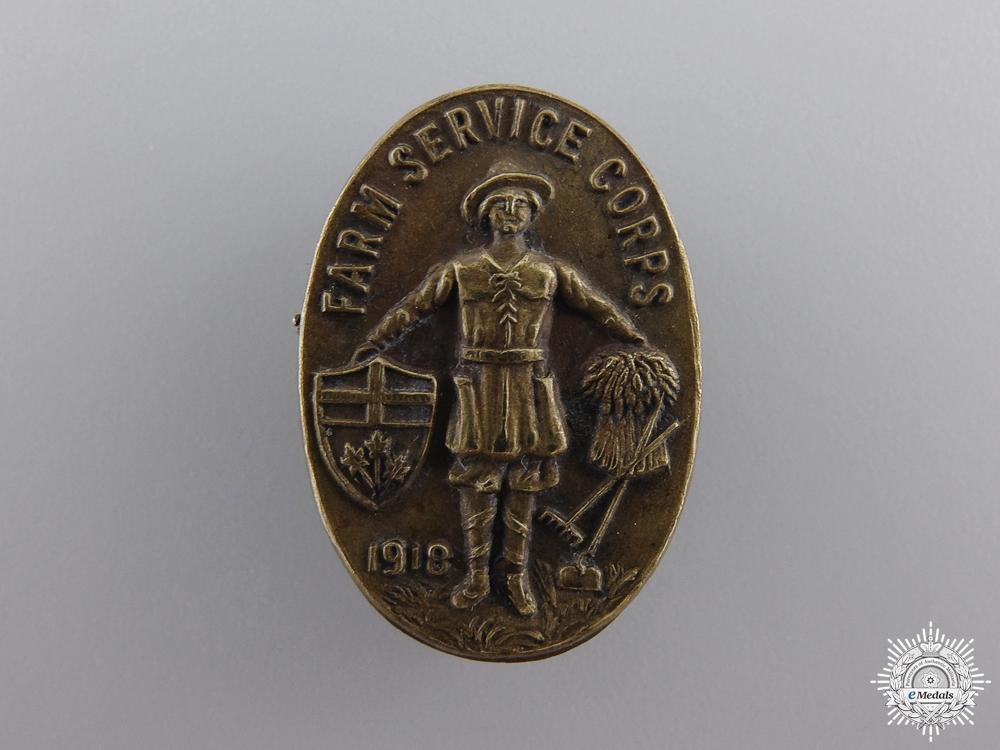 eMedals-A Rare 1918 Ontario Farm Service Corps Badge