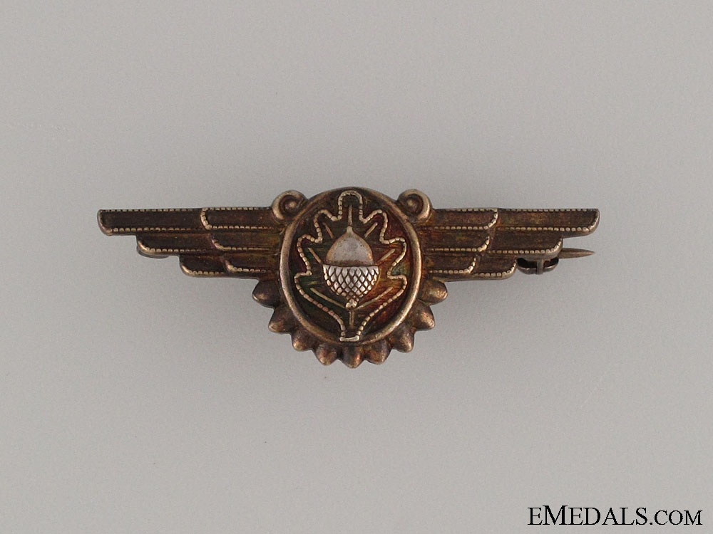 eMedals-An Early WWII Naval Flight Surgeon Badge