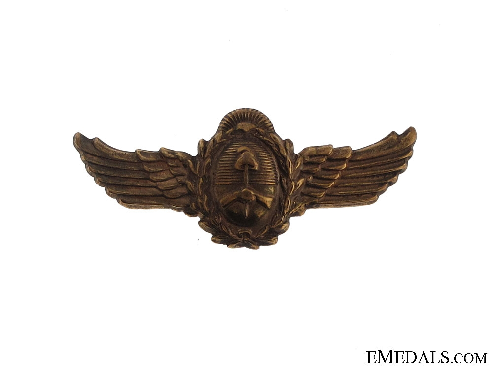 eMedals-Argentinian Air Force Wings