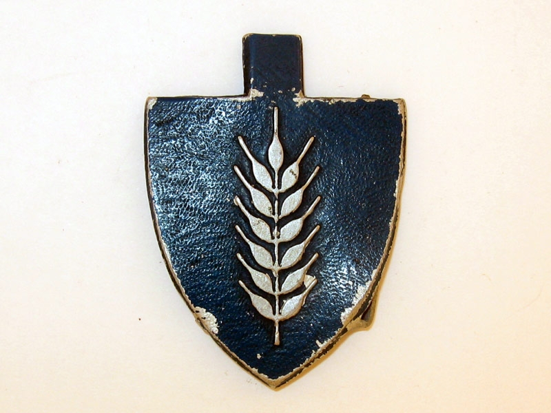 eMedals-National Labor Service 1941-45,