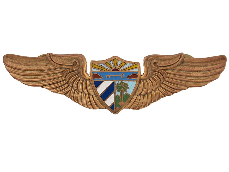 eMedals-Pilots Wing