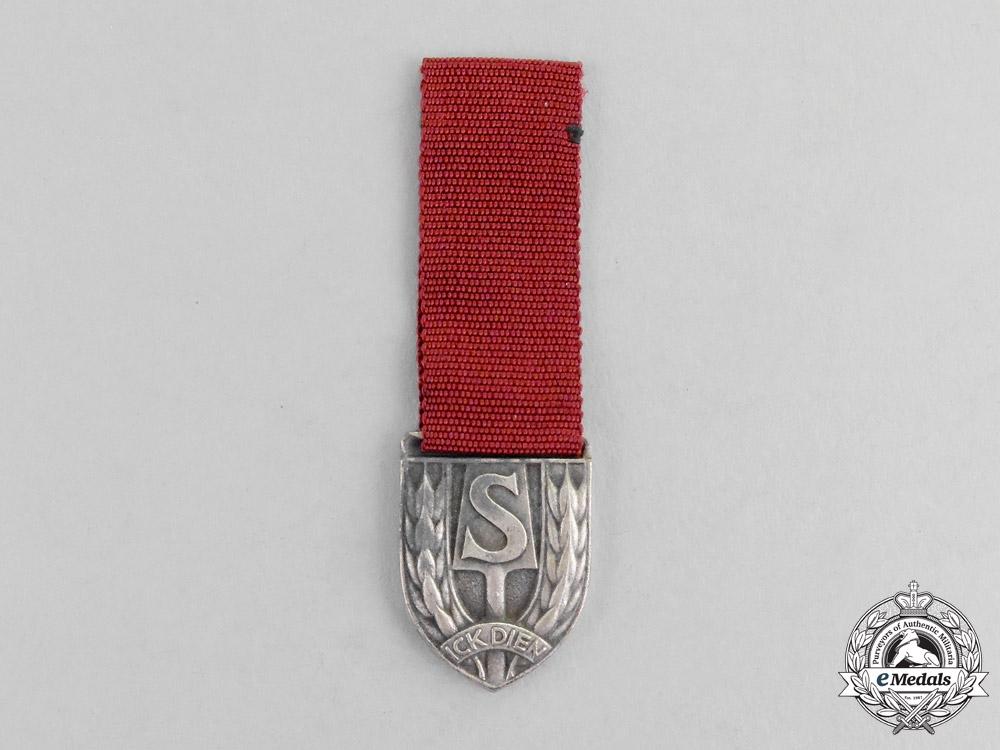 eMedals-A Miniature Dutch RAD Medal