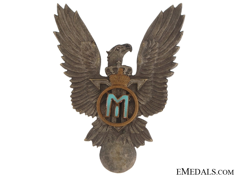 eMedals-Pilot's Badge – Michael Cypher