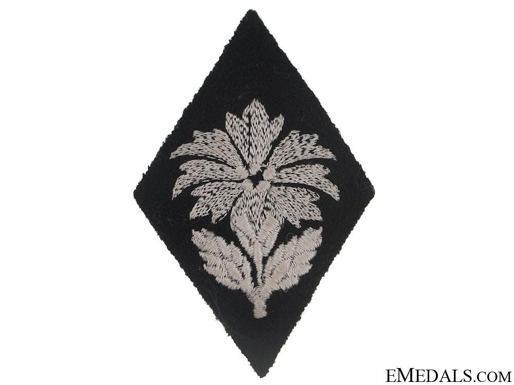 eMedals-SS-Fachf¡_hrer/Fachunterf¡_hrer Assignment Badge