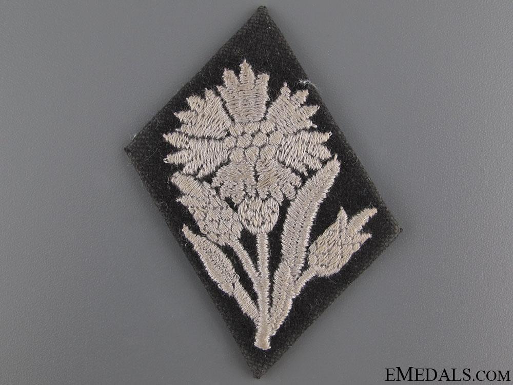 eMedals-Waffen-SS Tab for 22 SS Freiwilligen Kavallerie