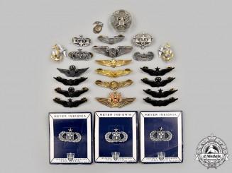 United States. A Lot of Twenty-Five Military Badges