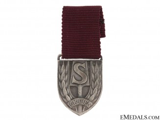 A Dutch Nazi RAD Medal