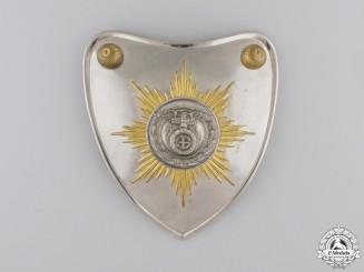 A 1929 Pattern SS/SA Gorget