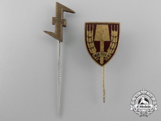 Two Second War Stickpins; Dutch SS & Labour Service