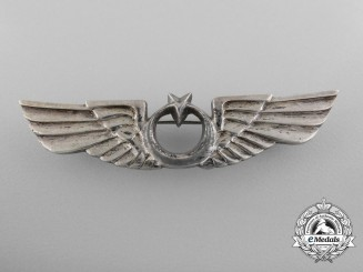 A Set of Unidentified Second War Period Wings