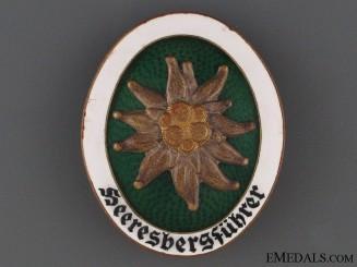A Rare Alpine Leaders Badge