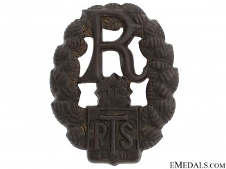 A Rare PTB Police Badge