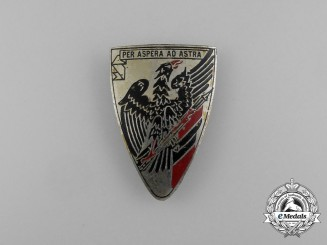"""A Third Reich German """"Through Hardships to the Stars"""" Badge"""