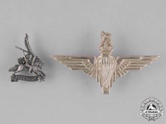 United Kingdom. Two Parachute Regiment Badges