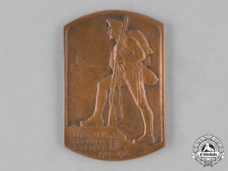 Hungary, Kingdom. A First War Hungarian 14th Infantry Regiment Medallion