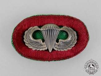 United States. A Medical Parachutist Badge