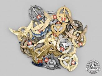 Slovakia, II Republic. Lot of Twenty-One Slovak Air Force Badges (1993-Present)