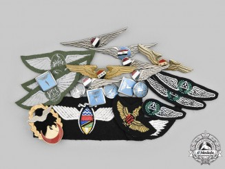 International. A Lot of Twenty-Three African and Middle Eastern Air Force Badges