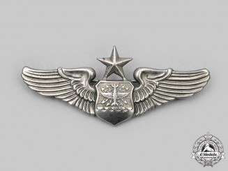 United States. A United States Air Force (USAF) Senior Navigator/Combat Systems Officer/Observer Badge