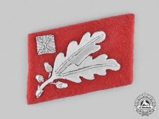 Germany, SA. A Sturmabteilung Brigadeführer Collar Tab