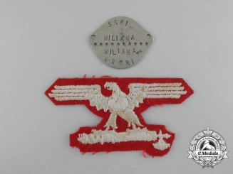 An Italian SS EM/NCO Volunteer's Sleeve Eagle