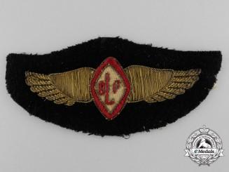An Original & Rare 1924 Canadian Department of Lands & Forest Pilot's Wing