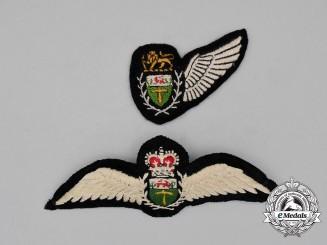 Two Rhodesian Air Force Wings