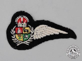 A Second War South African Air Force (SAAF) Observer's Half Wing
