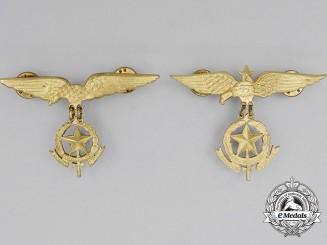 Two Paraguayan Air Force (FAP) Pilot Badges