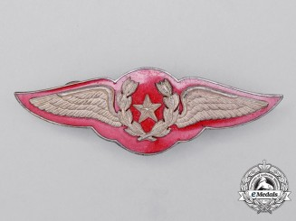 A Chilean Air Force Pilot Badge